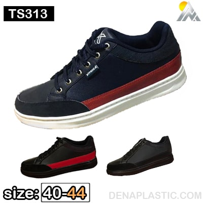 TS313