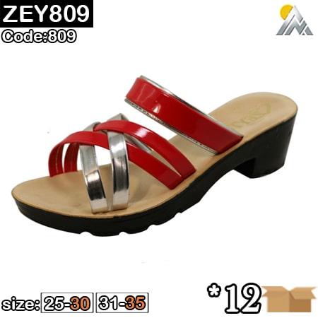 ZEY809