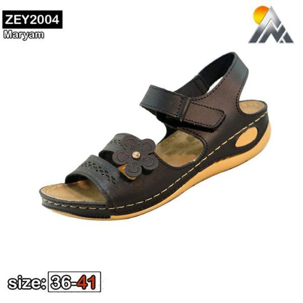 ZEY2004